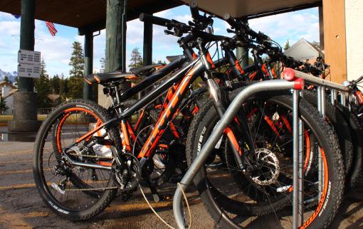 Amenities Bike Rentals